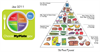 Michelle Obama's MyFoodPlate vs. the old Food Pyramid